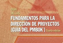 Cosas del Project Manager