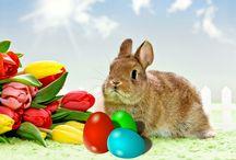 Wielkanocny królik / Wielkanoc z króliczym motywem. Sporo ciekawych pomysłów na dekoracje świąteczne motywem królika.