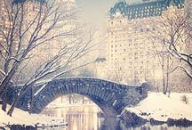 """""""Perfect Holiday in NYC"""" / by Barbara Scheidler"""