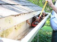 Gutter Extender / A gutter downspout extension causing a serious problem in the landscaping and along a walkway