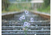 about rain