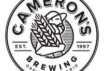 Emblem Logo Style / Logo with an emblem style