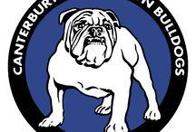 Bulldogs / NRL