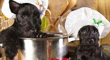 Hundefutter/Leckerchen selber machen