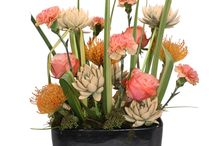 Autumn ideas with Ami Deco / Autumn decorations with cut echeveria's from Ami Deco