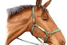 horse art inspo