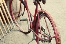 Bicycles / by Annette McTighe