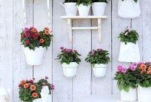 Happy garden / by Inge de Olde