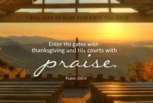 Day 8- Praise God