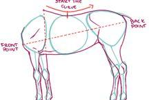 Kresba koní