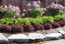 Front yard ideas / by Leah Rovinsky