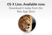 No1nana~Lion