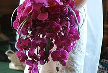 2014 Radiant Orchid Pantone Color of the Year