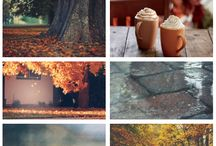 AUTUMN / because fall is my favourite season of the year