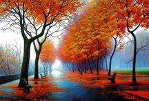 Seasons Change  / by Tiffany Cayce-Jacob