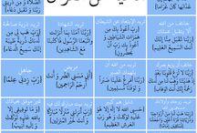 الاسلام ديني