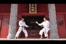 Fighting Arts - Martial Arts or -method / about the fighting arts: origins, secrets, effectivity