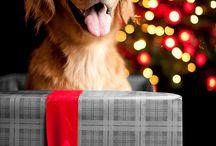 Love Christmas ♥