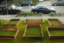 Warburton vegie garden