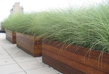 zahrada truhliky, nadoby