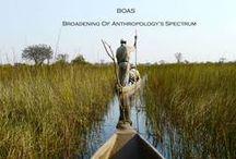 BOAS photos / photos from our site www.boasnetwork.com