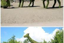 Green Garden Sculpture/Topiary