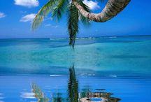 Some Beach ... Some Where / by Chelsa Kelley