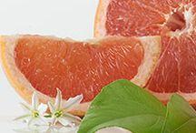 PartyLite tuoksut Talvi/Kevät 2016 / Eri sarjat: Fresh Home, Kielletty hedelmä, Kielletty fantasia ja Brighter World, sekä 30 muuta tuoksua! Linkit johdattavat sinut verkkokauppaan, josta näet missä muodoissa voit näitä tuoksuja saada!