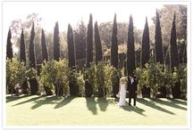 Wine Cellar San Ysidro Ranch Wedding