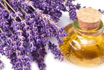 All about Lavender / Everything about you would possibly want to know about lavender. Lavender in your food, for your skin, for your hair , for your health etc.