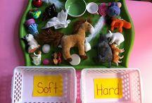 Montessori activies