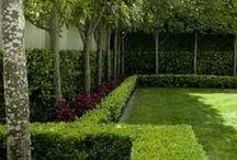 Egremont garden