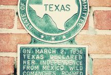 TEXAS HISTORY / by Holly Moss