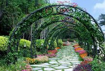 Flores y jardines / Toda clase de flores.
