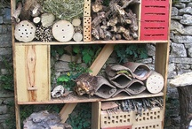 --- Insect Hotels ---
