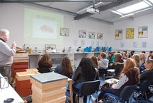 Our bees & training courses / Pictures of our bees and training courses