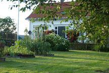 Our old farmhouse