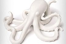 octopus, nautilis, squid, etc
