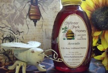 Natural Raw Avocado Honey / A great allergy honey for south florida allergy sufferers, this Avocado Honey is the darkest honey we have. It's rich in antioxidants.  Use this honey to boost your immune system and help cure whatever ails you. This honey comes from Homestead, Florida where fields of avocados bloom.