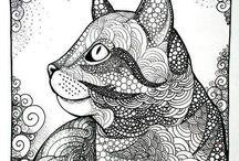 Kedi başı