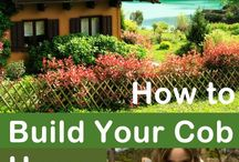 Eco friendly small houses