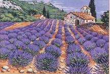 Lavender draw, paint