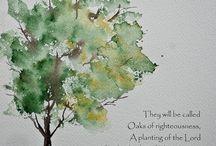 소나무와글