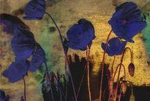 Artists: Odilon Redon