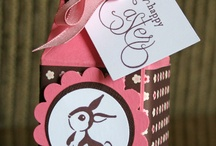 Candy Box Ideas / by Sue Pehrson