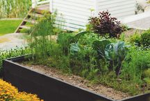 ideoita puutarhaan