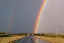 Taste the Rainbow / by Jami Levendusky