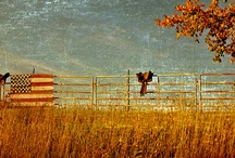 Country / Simple Life
