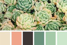 Color Inspiration / by Le Weath