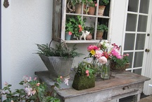 Backyard Cottages & Gardens / by janelle @ Sweet Bee Cottage